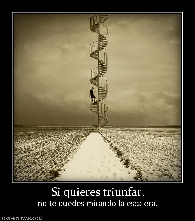 Si quieres triunfar, no te quedes mirando la escalera.