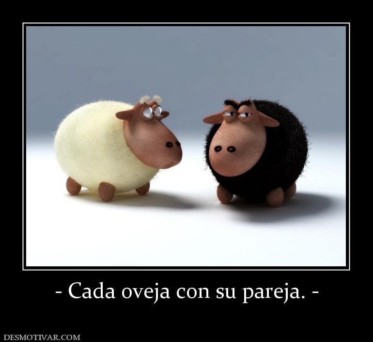 Cada oveja con su pareja. -