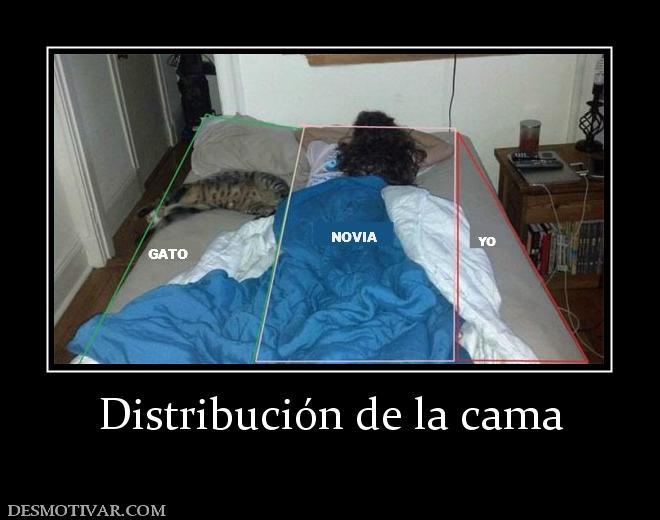 Desmotivaciones distribuci n de la cama - Cabecero de cama con fotos ...