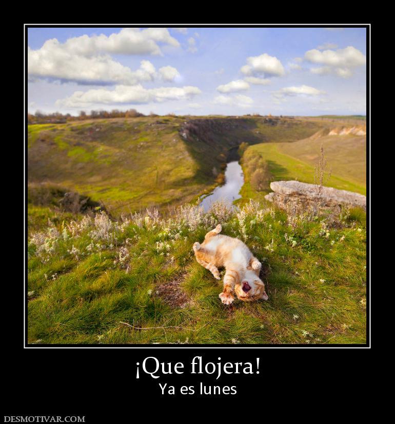 Que Flojera Ya Es Lunes Pictures
