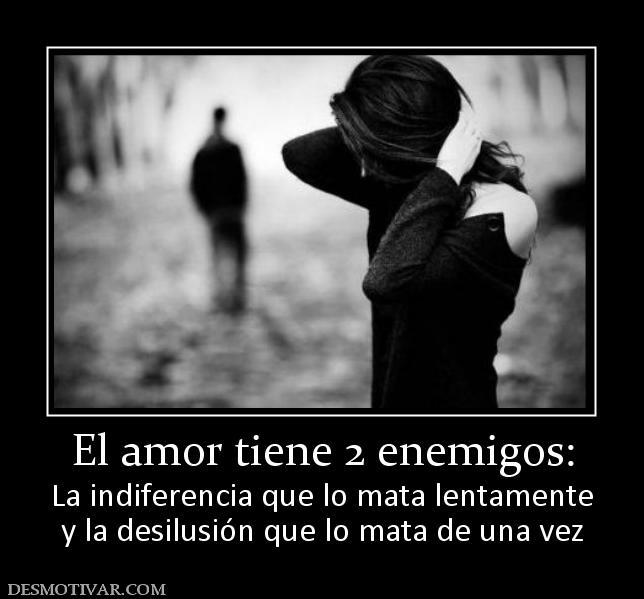 El amor tiene 2 enemigos: La indiferencia que lo mata lentamente y la  desilusión que