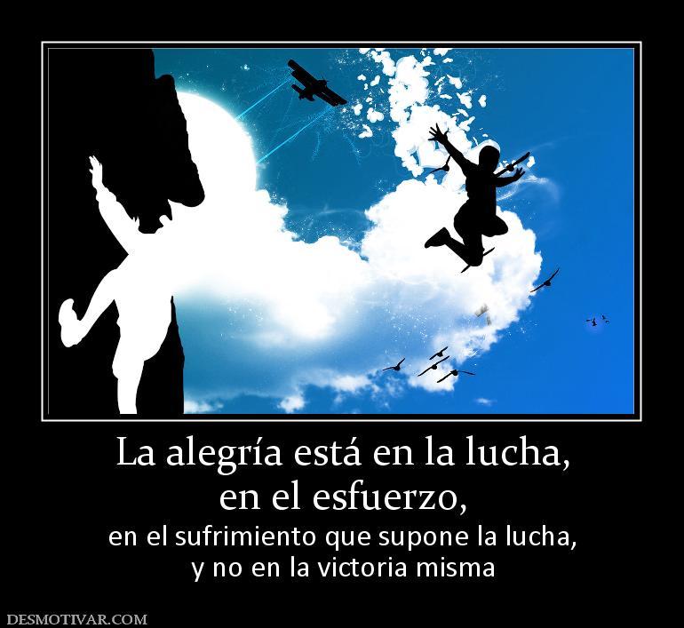 Lucha Y