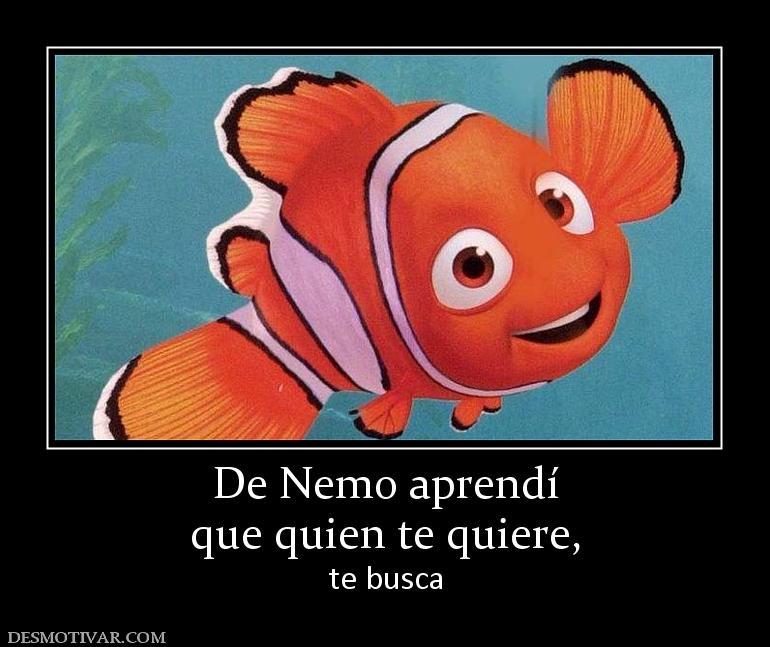 De Nemo aprendí que quien te quiere, te busca