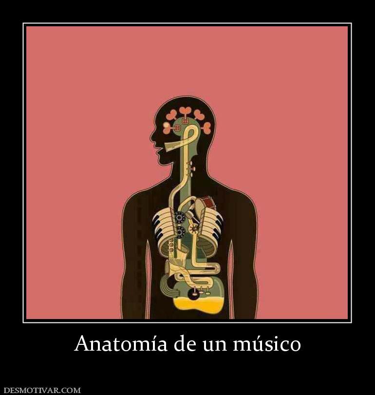 Desmotivaciones Anatomía de un músico