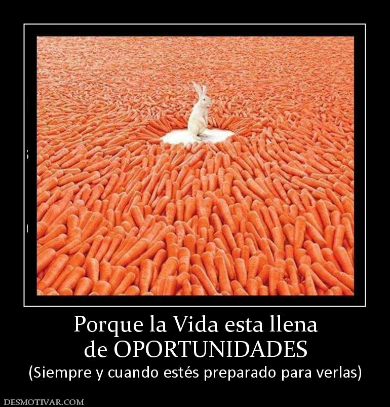 Related Pictures Pictures Frases Gina Indelicada Mensagens Recados ...
