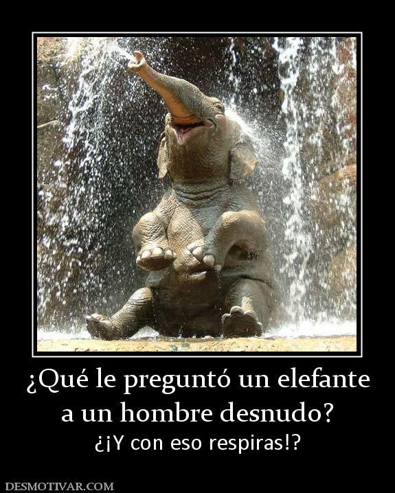 ... le preguntó un elefante a un hombre desnudo? ¿¡Y con eso respiras: www.desmotivar.com/desmotivaciones/172321_que-le-pregunto-un...