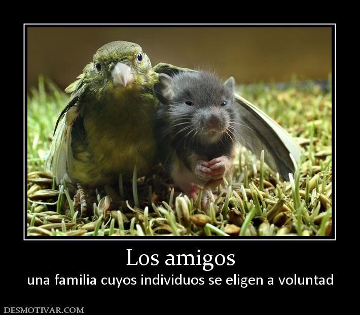 Desmotivaciones Los Amigos Una Familia Cuyos Individuos Se