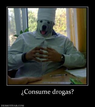 ¿Consume drogas?