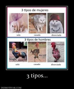 3 tipos...