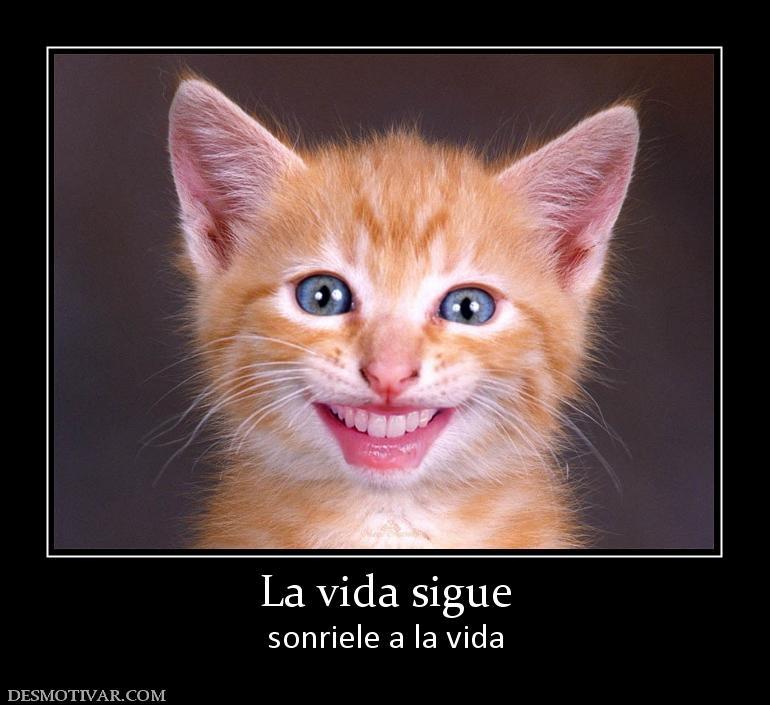 La Vida Sigue Sonriele A La Vida