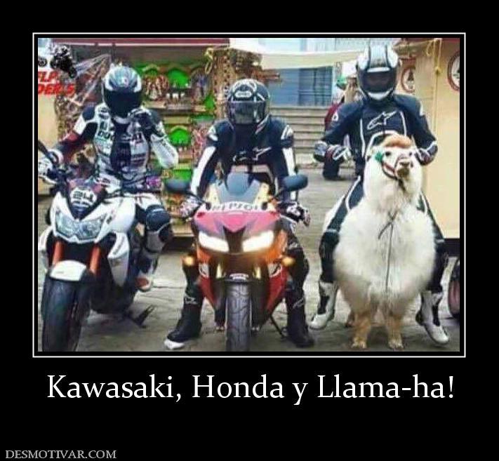 Kawasaki Memes