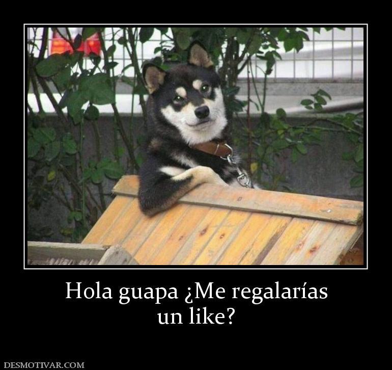 Desmotivaciones Hola Guapa Me Regalarías Un Like