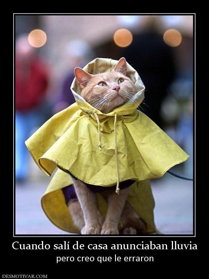 Desmotivaciones Cuando salí de casa anunciaban lluvia pero creo que ...