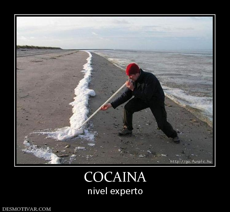 Desmotivaciones Cocaina Nivel Experto Picture to Pin on ...