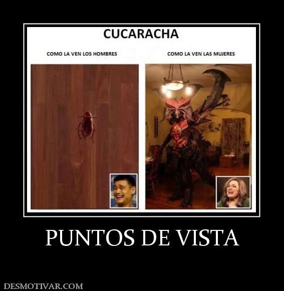 PUNTOS DE VISTA