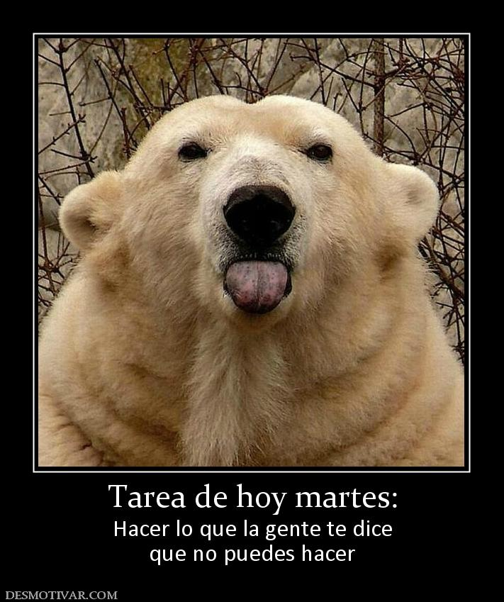 Tarea in English | Spanish to English Translation