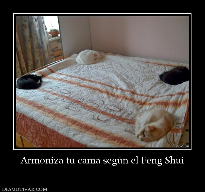 Desmotivaciones armoniza tu cama seg n el feng shui for Segun feng shui donde mejor poner cama