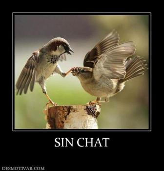 SIN CHAT