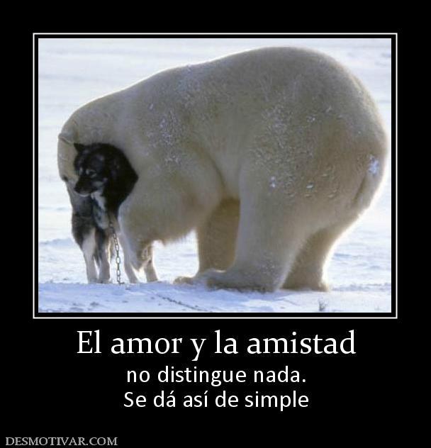 Etiquetas Animales Amor Amigos El Amor Y La Amistad No Distingue Nada